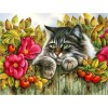 5d Cat Diamond Painting Kit Premium-13