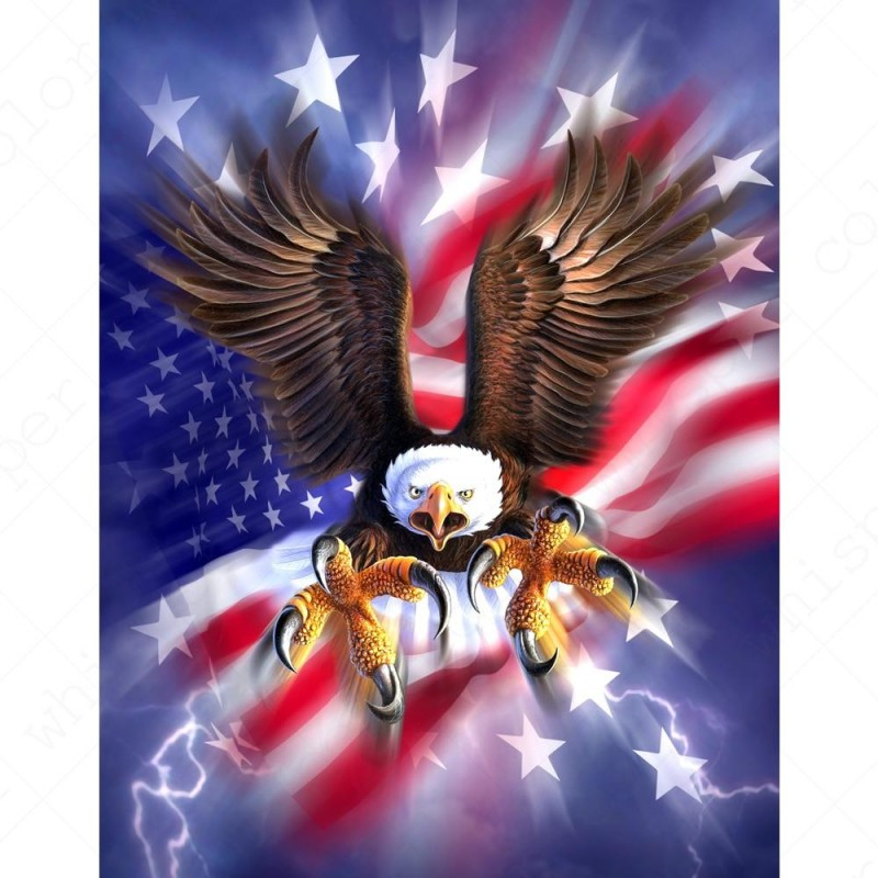 Eagle American Flag Diamo...